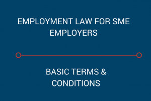 Employment law - basic terms of employment